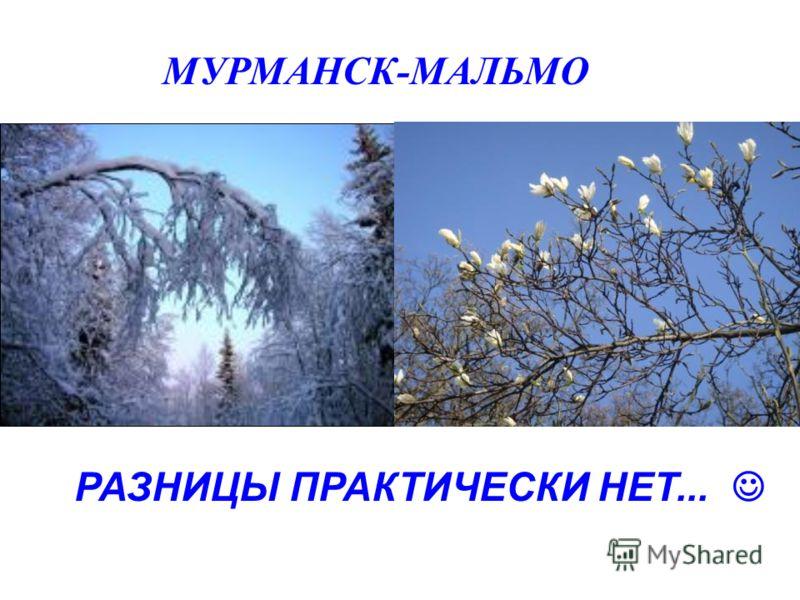 МУРМАНСК-МАЛЬМО РАЗНИЦЫ ПРАКТИЧЕСКИ НЕТ...