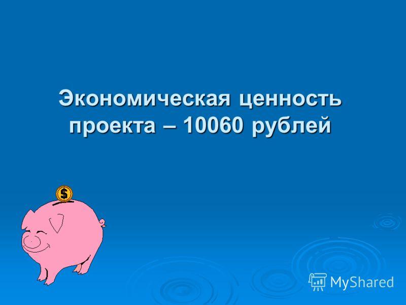 Экономическая ценность проекта – 10060 рублей