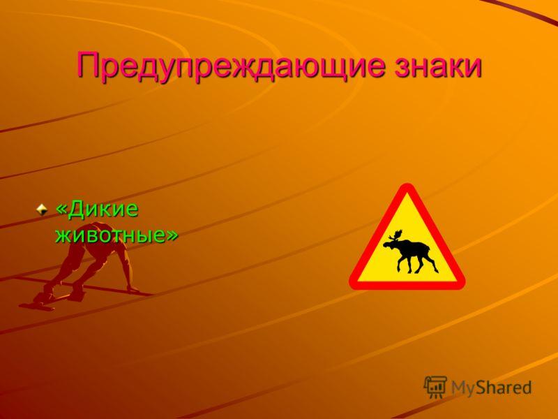 Предупреждающие знаки «Дикие животные»