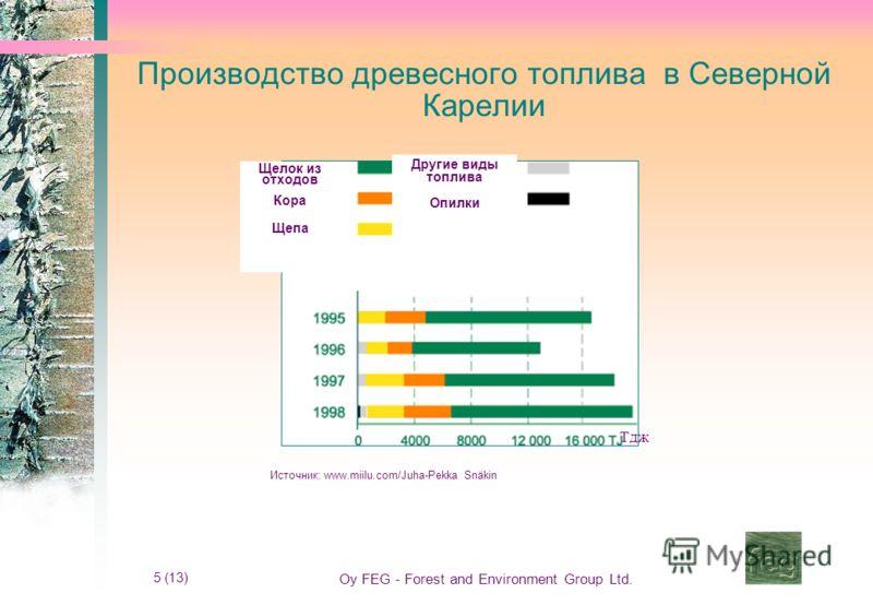 5 (13) Oy FEG - Forest and Environment Group Ltd. Производство древесного топлива в Северной Карелии Источник: www.miilu.com/Juha-Pekka Snäkin Щелок из отходов Кора Щепа Другие виды топлива Опилки Тдж