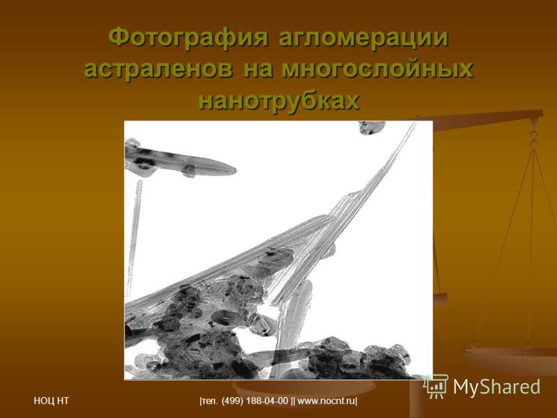 НОЦ НТ |тел. (499) 188-04-00 || www.nocnt.ru| Фотография агломерации астраленов на многослойных нанотрубках
