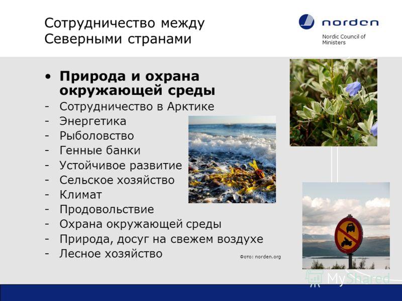 Nordic Council of Ministers Сотрудничество между Северными странами Природа и охрана окружающей среды -Сотрудничество в Арктике -Энергетика -Рыболовство -Генные банки -Устойчивое развитие -Сельское хозяйство -Климат -Продовольствие -Охрана окружающей