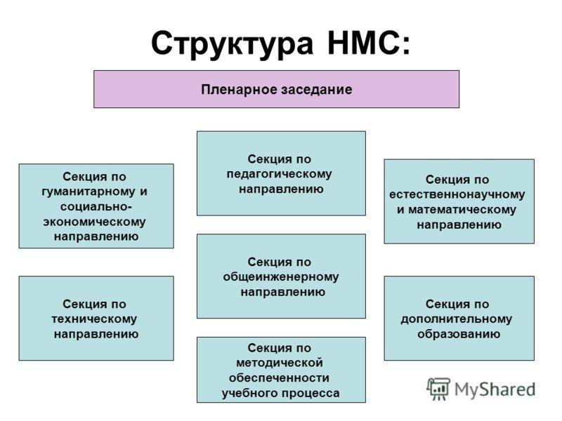 Структура НМС: Секция по гуманитарному и социально- экономическому направлению Секция по естественнонаучному и математическому направлению Секция по техническому направлению Секция по дополнительному образованию Секция по методической обеспеченности