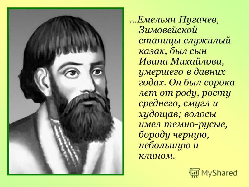 ...Емельян Пугачев, Зимовейской станицы служилый казак, был сын Ивана Михайлова, умершего в давних годах. Он был сорока лет от роду, росту среднего, смугл и худощав; волосы имел темно-русые, бороду черную, небольшую и клином.