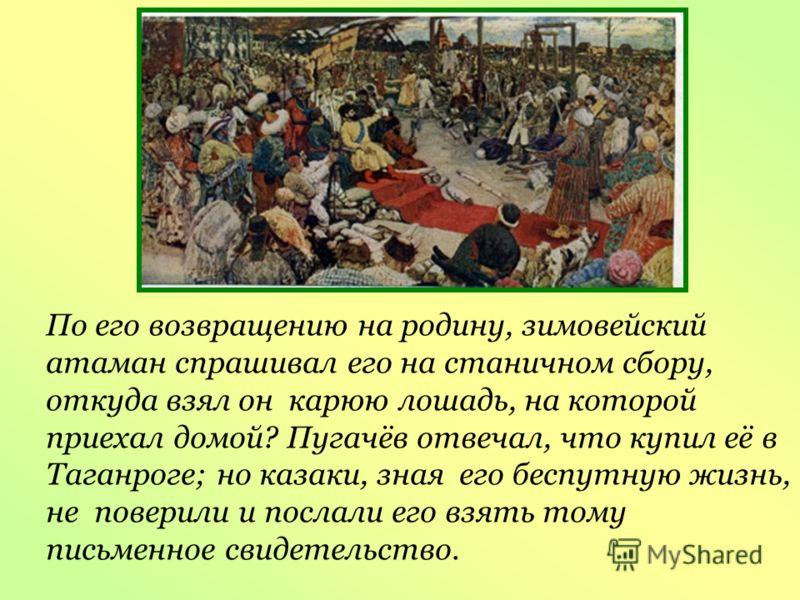 По его возвращению на родину, зимовейский атаман спрашивал его на станичном сбору, откуда взял он карюю лошадь, на которой приехал домой? Пугачёв отвечал, что купил её в Таганроге; но казаки, зная его беспутную жизнь, не поверили и послали его взять