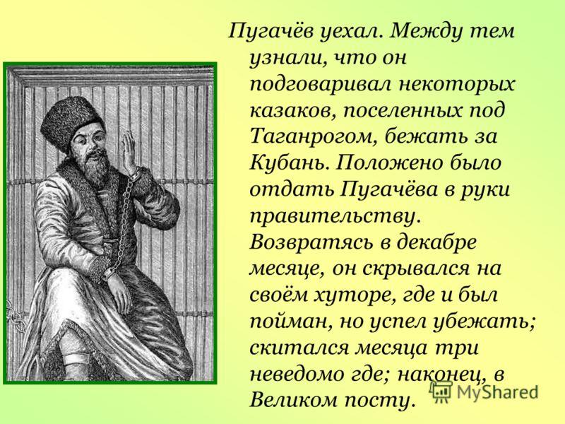 Пугачёв уехал. Между тем узнали, что он подговаривал некоторых казаков, поселенных под Таганрогом, бежать за Кубань. Положено было отдать Пугачёва в руки правительству. Возвратясь в декабре месяце, он скрывался на своём хуторе, где и был пойман, но у