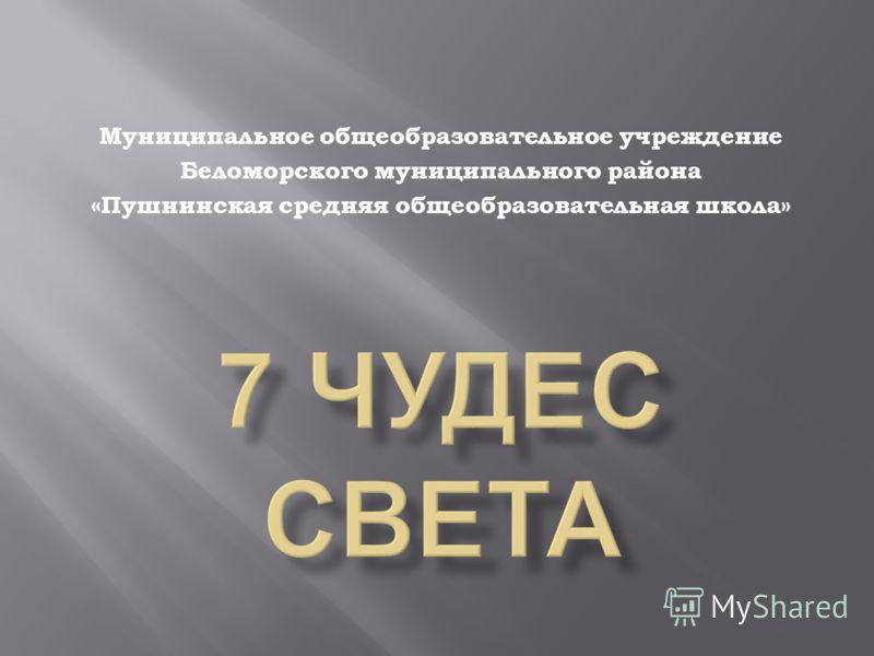 Муниципальное общеобразовательное учреждение Беломорского муниципального района «Пушнинская средняя общеобразовательная школа»