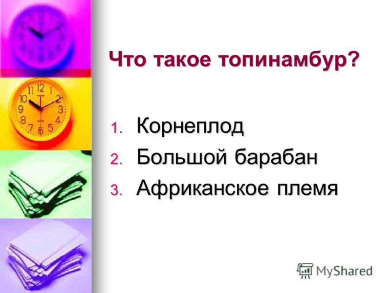 Что такое топинамбур? 1. Корнеплод 2. Большой барабан 3. Африканское племя