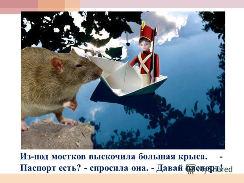 Из-под мостков выскочила большая крыса. - Паспорт есть? - спросила она. - Давай паспорт!