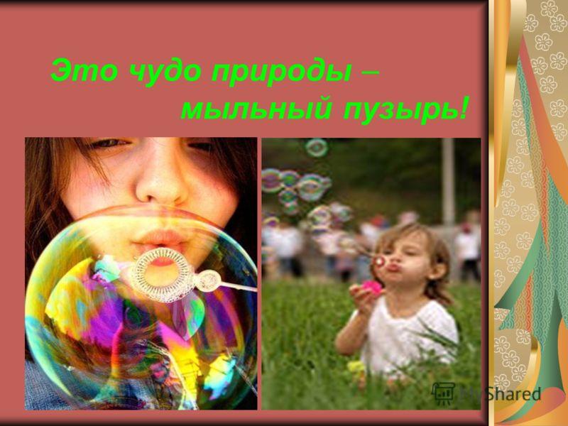 Это чудо природы – мыльный пузырь!