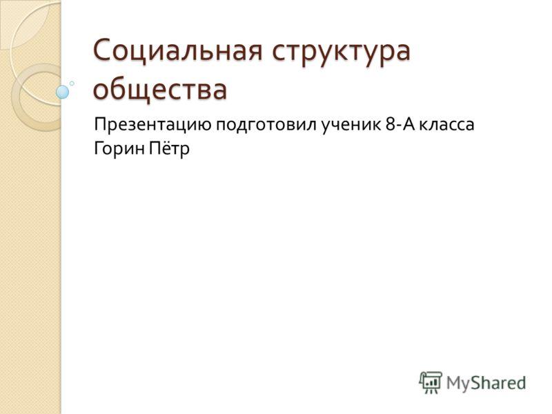 Социальная структура общества Презентацию подготовил ученик 8- А класса Горин Пётр
