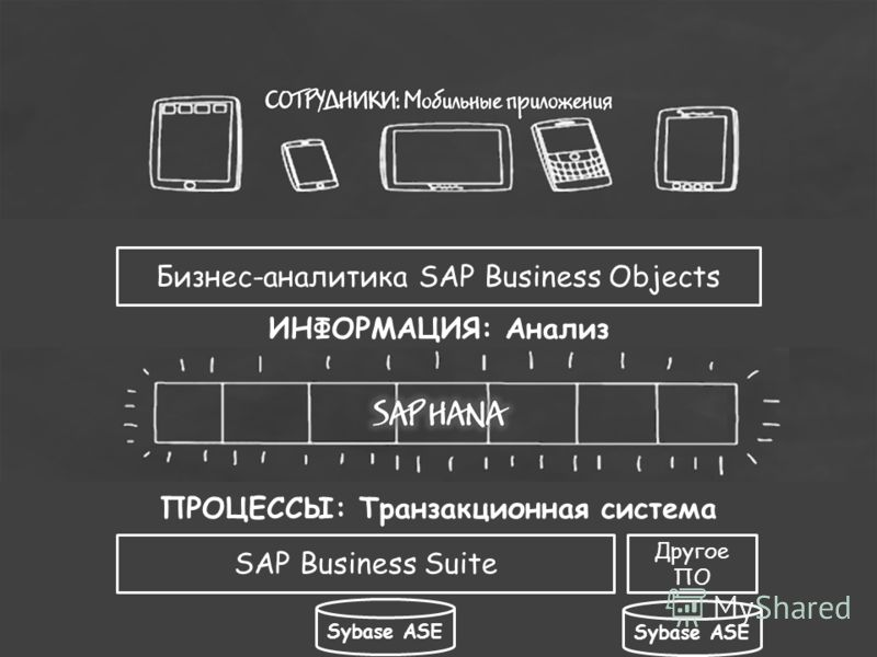 ПРОЦЕССЫ: Транзакционная система Бизнес-аналитика SAP Business Objects ИНФОРМАЦИЯ: Анализ SAP Business Suite Другое ПО Sybase ASE