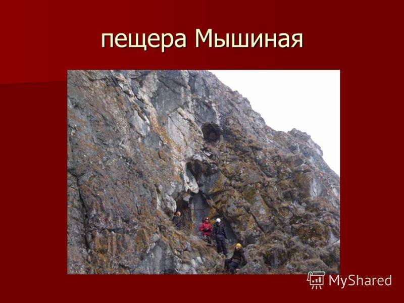 пещера Мышиная