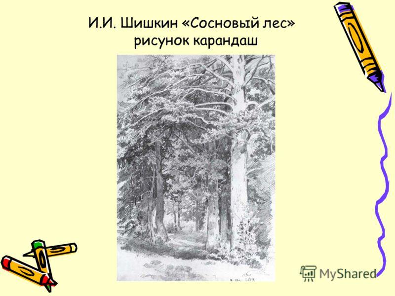 И.И. Шишкин «Сосновый лес» рисунок карандаш