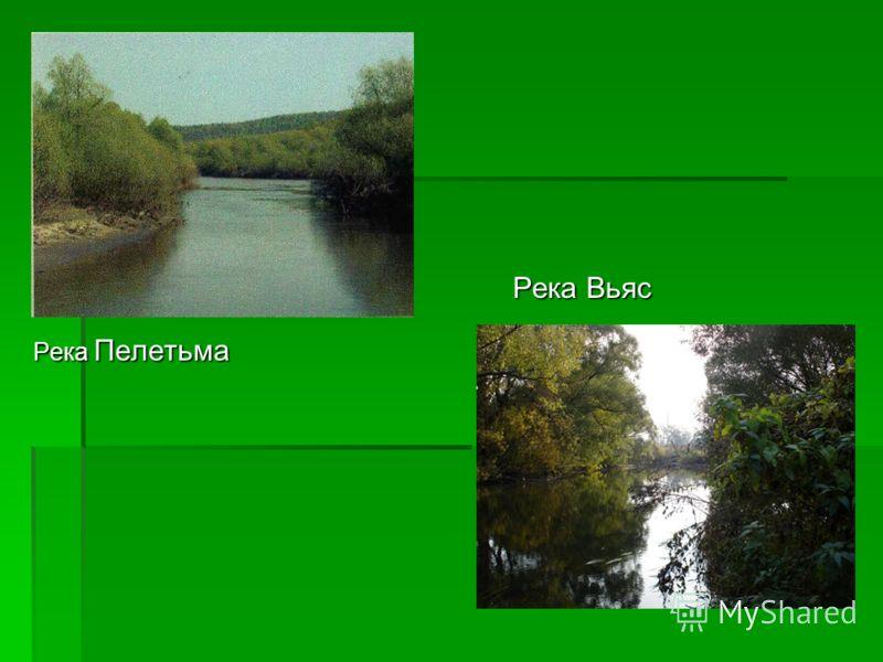 Река Пелетьма Река Вьяс