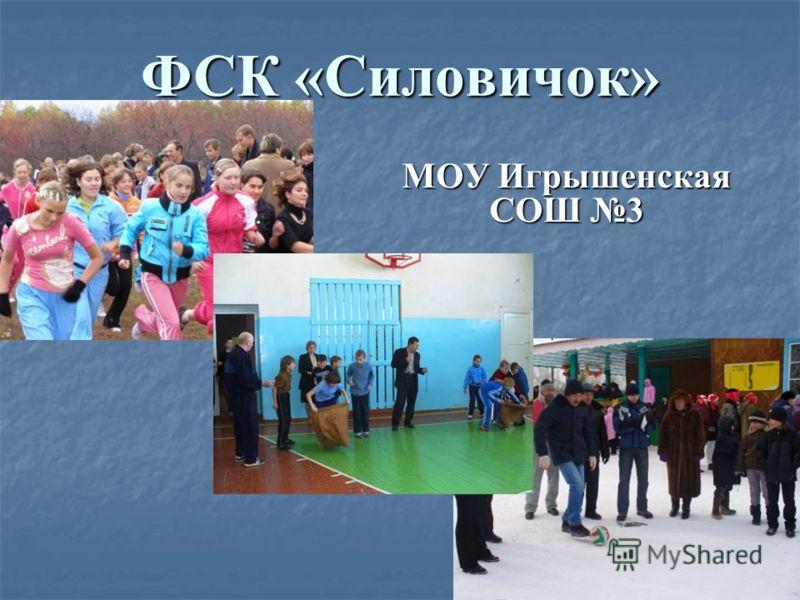 ФСК «Силовичок» МОУ Игрышенская СОШ 3