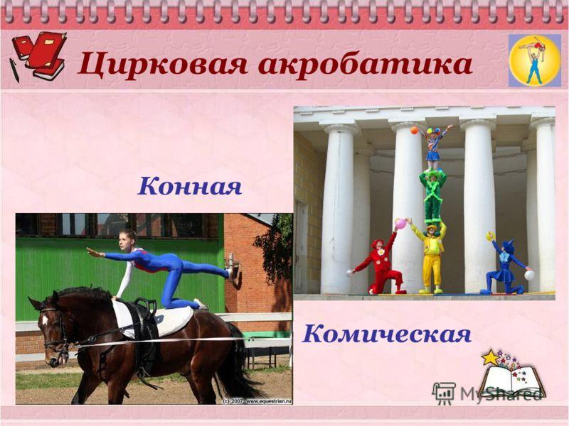 Цирковая акробатика Конная Комическая