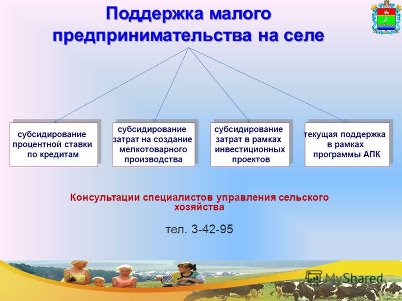 субсидирование процентной ставки по кредитам субсидирование процентной ставки по кредитам субсидирование затрат на создание мелкотоварного производства субсидирование затрат на создание мелкотоварного производства субсидирование затрат в рамках инвес