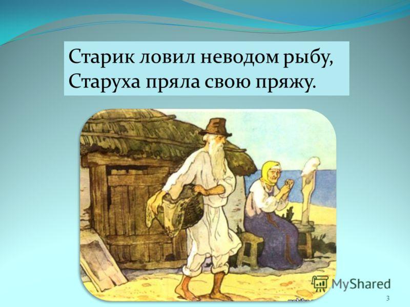 Старик ловил неводом рыбу, Старуха пряла свою пряжу. 3