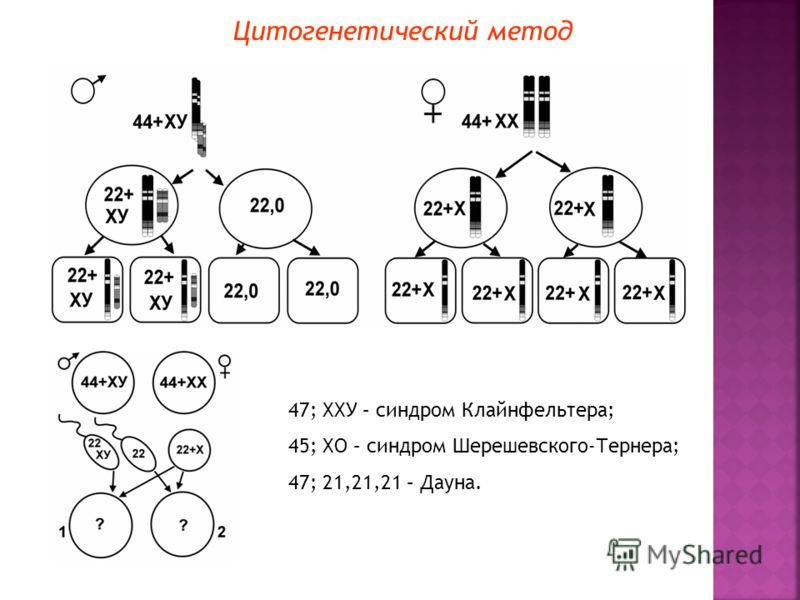 Цитогенетический метод 47; ХХУ – синдром Клайнфельтера; 45; ХО – синдром Шерешевского-Тернера; 47; 21,21,21 – Дауна.