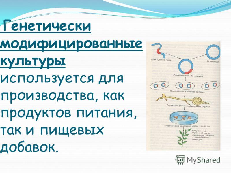 Генетически модифицированные культуры используется для производства, как продуктов питания, так и пищевых добавок.