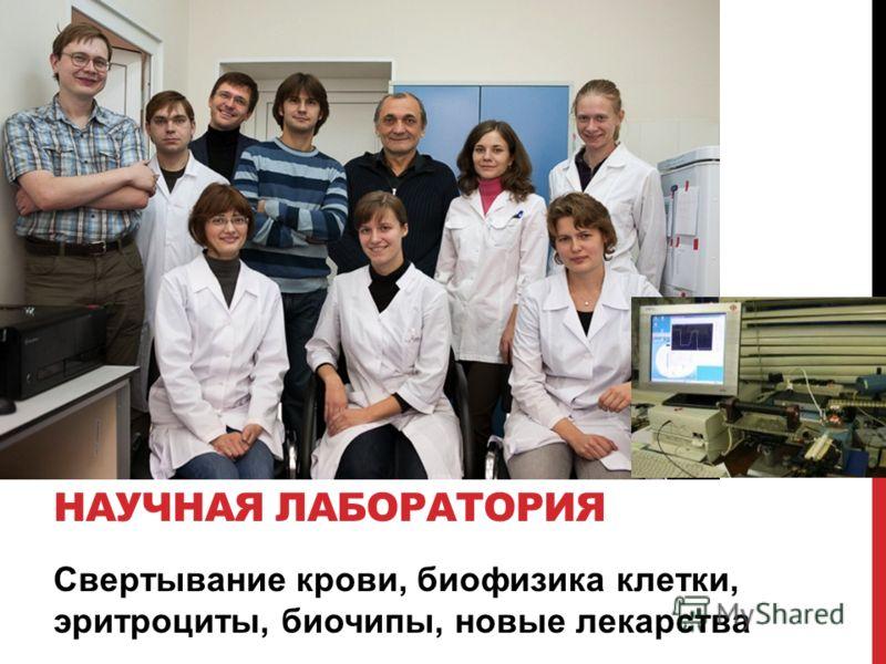 Свертывание крови, биофизика клетки, эритроциты, биочипы, новые лекарства НАУЧНАЯ ЛАБОРАТОРИЯ