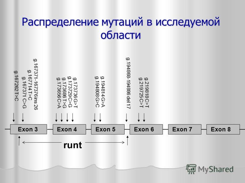 Распределение мутаций в исследуемой области g.167262 T>C g.167371-167376 ins 26 g.167714 T>C g.167371 C>G Exon 3 Exon 4 Exon 5 Exon 6 Exon 7 Exon 8 g.173656 C>A g.173686 T>G g.173729 C>G g.173736 G>T g.194808 G>C g.194814 G>A g.194868-194886 del 17 g