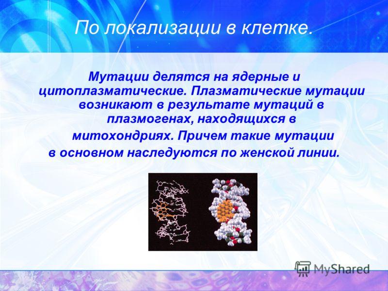 По локализации в клетке. Мутации делятся на ядерные и цитоплазматические. Плазматические мутации возникают в результате мутаций в плазмогенах, находящихся в митохондриях. Причем такие мутации в основном наследуются по женской линии.