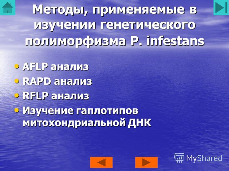 Методы, применяемые в изучении генетического полиморфизма P. infestans AFLP анализ AFLP анализ RAPD анализ RAPD анализ RFLP анализ RFLP анализ Изучение гаплотипов митохондриальной ДНК Изучение гаплотипов митохондриальной ДНК