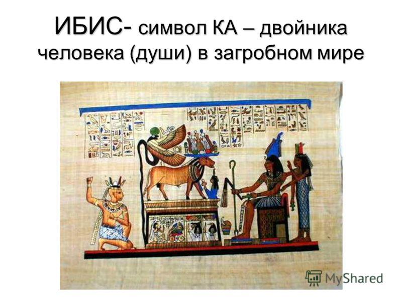 ИБИС- символ КА – двойника человека (души) в загробном мире
