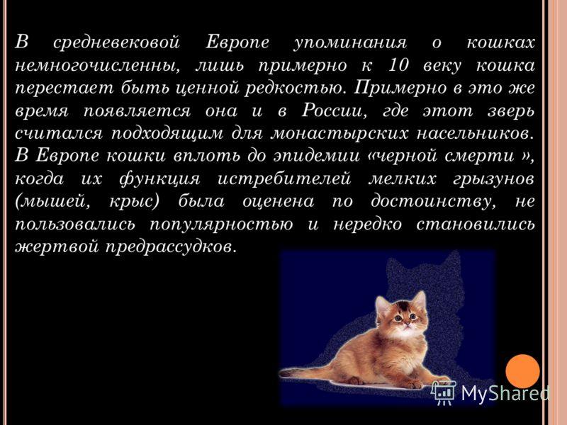 В средневековой Европе упоминания о кошках немногочисленны, лишь примерно к 10 веку кошка перестает быть ценной редкостью. Примерно в это же время появляется она и в России, где этот зверь считался подходящим для монастырских насельников. В Европе ко