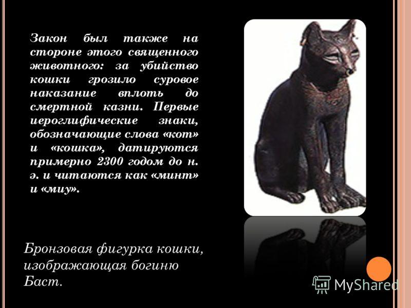 Бронзовая фигурка кошки, изображающая богиню Баст. Закон был также на стороне этого священного животного: за убийство кошки грозило суровое наказание вплоть до смертной казни. Первые иероглифические знаки, обозначающие слова «кот» и «кошка», датируют
