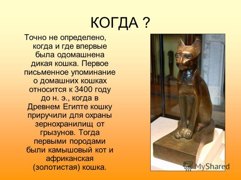 КОГДА ? Точно не определено, когда и где впервые была одомашнена дикая кошка. Первое письменное упоминание о домашних кошках относится к 3400 году до н. э., когда в Древнем Египте кошку приручили для охраны зернохранилищ от грызунов. Тогда первыми по