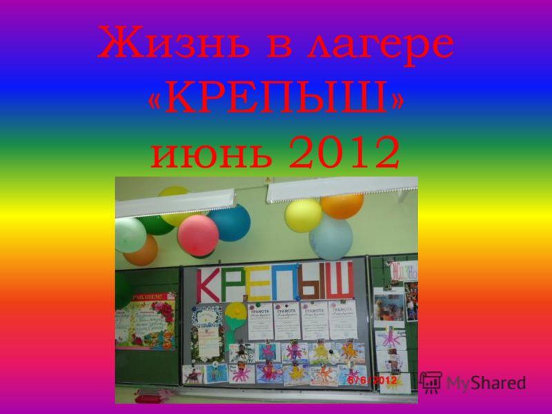 Жизнь в лагере «КРЕПЫШ» июнь 2012