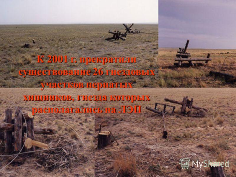 К 2001 г. прекратили существование 26 гнездовых участков пернатых хищников, гнезда которых располагались на ЛЭП