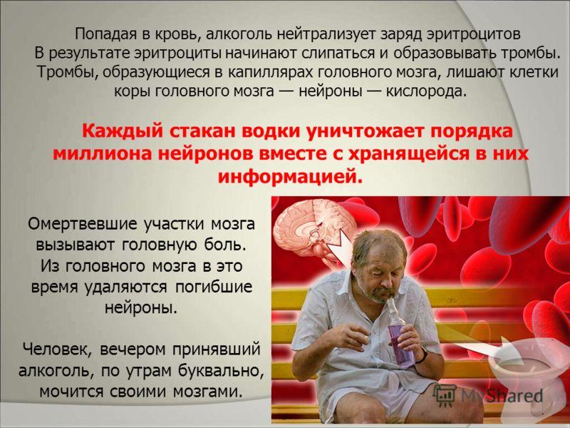Попадая в кровь, алкоголь нейтрализует заряд эритроцитов В результате эритроциты начинают слипаться и образовывать тромбы. Тромбы, образующиеся в капиллярах головного мозга, лишают клетки коры головного мозга нейроны кислорода. Каждый стакан водки ун