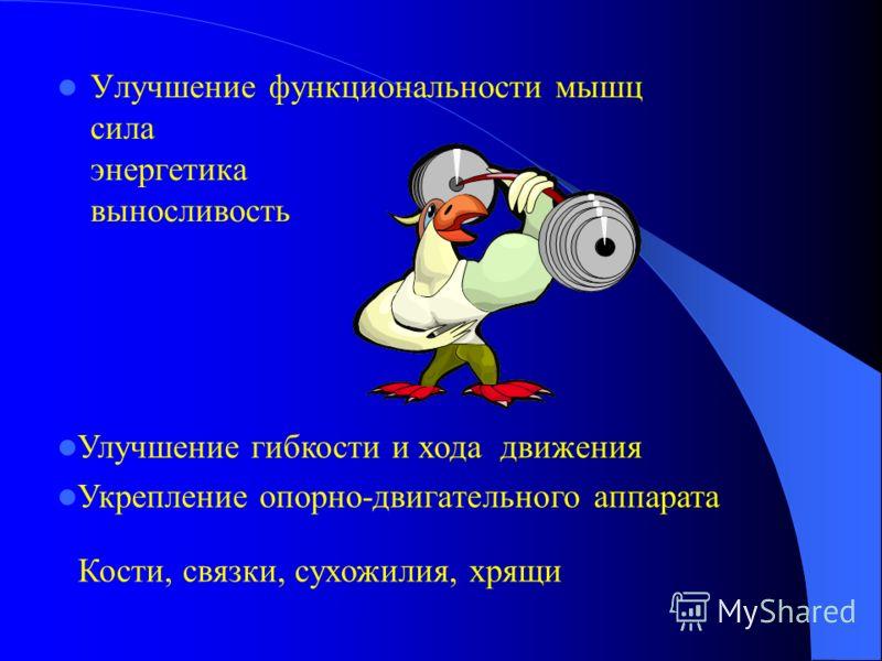 Улучшение функциональности мышц сила энергетика выносливость Улучшение гибкости и хода движения Укрепление опорно-двигательного аппарата Кости, связки, сухожилия, хрящи