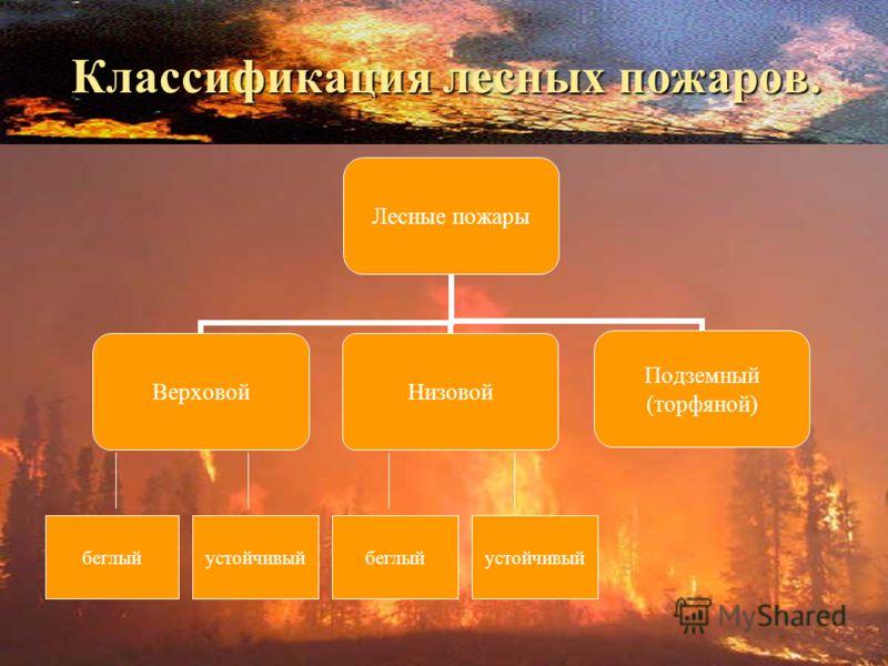 Лесные пожары ВерховойНизовой Подземный (торфяной) Классификация лесных пожаров. беглыйустойчивыйбеглыйустойчивый