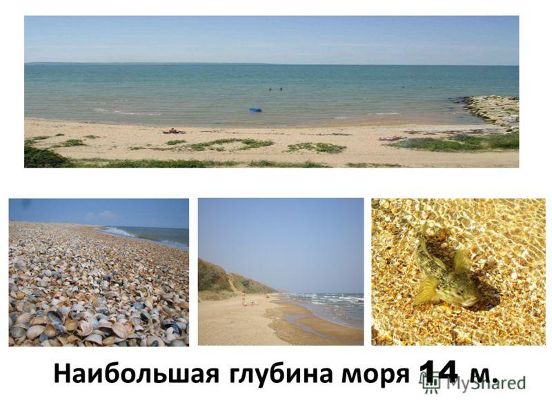 Азовское море самое маленькое и самое мелкое из морей нашей страны.