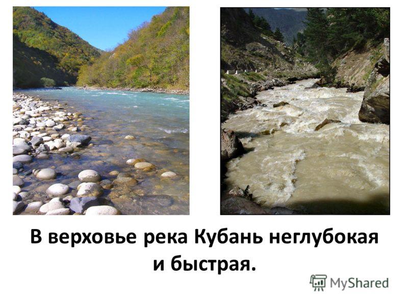 Протяжённость реки Кубань- 870 км, из них на территорию Краснодарского края приходится более 700 км.