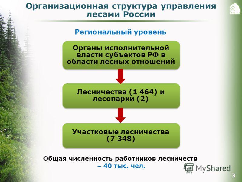 Региональный уровень Органы исполнительной власти субъектов РФ в области лесных отношений Лесничества (1 464) и лесопарки (2) Общая численность работников лесничеств – 40 тыс. чел. Участковые лесничества (7 348) 3 Организационная структура управления