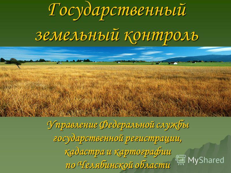 Государственный земельный контроль Управление Федеральной службы государственной регистрации, кадастра и картографии по Челябинской области