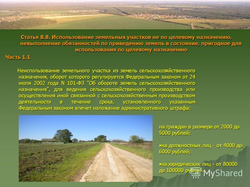 Неиспользование земельного участка из земель сельскохозяйственного назначения, оборот которого регулируется Федеральным законом от 24 июля 2002 года N 101-ФЗ