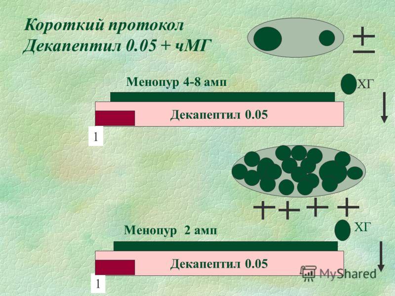 Короткий протокол Декапептил 0.05 + чМГ Декапептил 0.05 Менопур 2 амп ХГ Декапептил 0.05 1 1 Менопур 4-8 амп ХГ