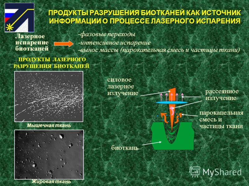 ПРОДУКТЫ РАЗРУШЕНИЯ БИОТКАНЕЙ КАК ИСТОЧНИК ИНФОРМАЦИИ О ПРОЦЕССЕ ЛАЗЕРНОГО ИСПАРЕНИЯ Лазерное испарение биотканей -фазовые переходы -интенсивное испарение -вынос массы (парокапельная смесь и частицы ткани) биоткань силовое лазерное излучение рассеянн