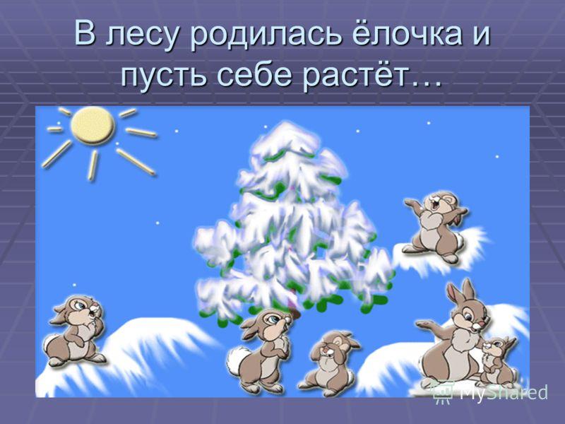 В лесу родилась ёлочка и пусть себе растёт…