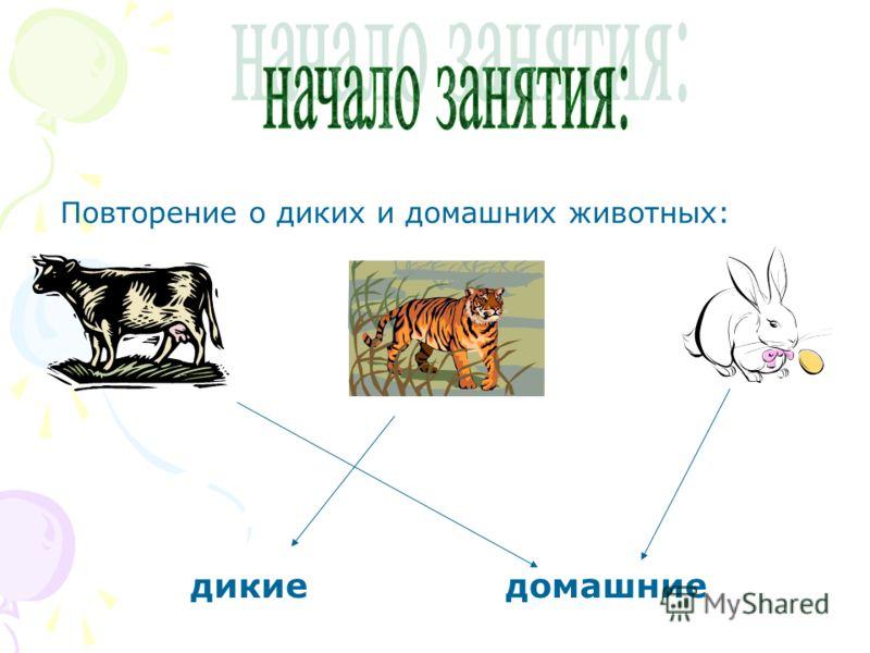 Повторение о диких и домашних животных: дикиедомашние