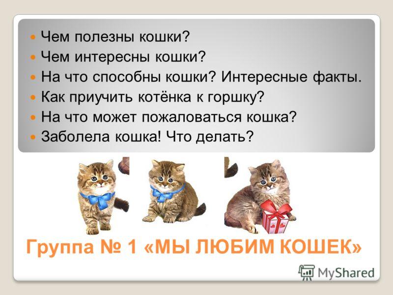 Группа 1 «МЫ ЛЮБИМ КОШЕК» Чем полезны кошки? Чем интересны кошки? На что способны кошки? Интересные факты. Как приучить котёнка к горшку? На что может пожаловаться кошка? Заболела кошка! Что делать?