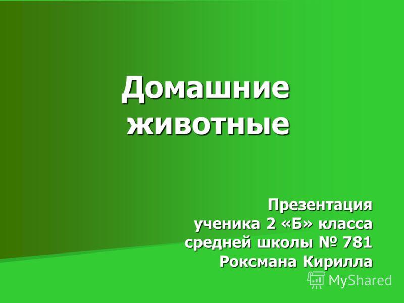Домашние животные Презентация ученика 2 «Б» класса средней школы 781 Роксмана Кирилла