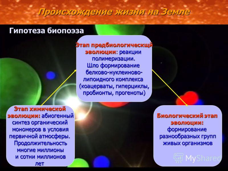 Происхождение жизни на Земле Гипотеза биопоэза Этап химической эволюции:абиогенный эволюции: абиогенный синтез органический мономеров в условия первичной атмосферы. Продолжительность многие миллионы и сотни миллионов лет Биологический этап эволюции:ф